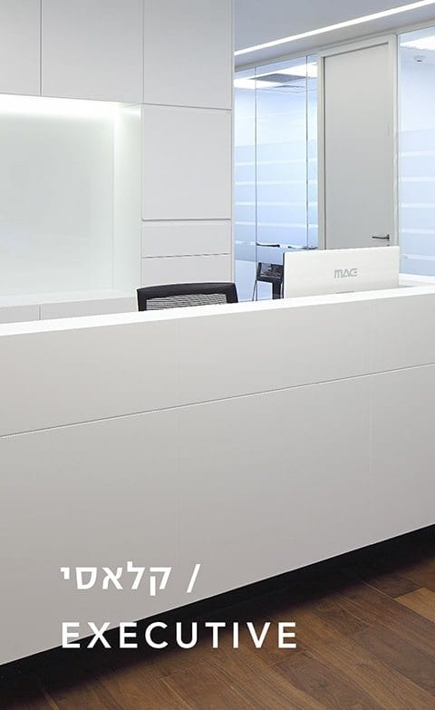 עיצוב משרדים קלאסי